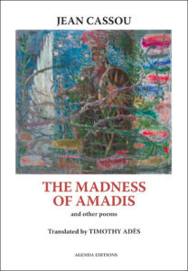 Madness of Amadas cover.indd